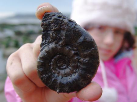 Dioses Ammonite1
