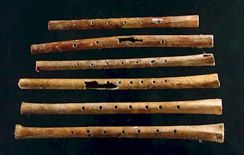 Ancient flutes.  Click to read the article in Nature.