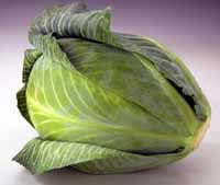 The mightly cabbage.  Click for nutritional information.